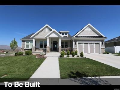 Springville Single Family Home For Sale: 557 S 1950 E #47