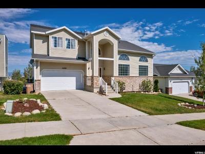 Draper Single Family Home For Sale: 14380 S Henry Day Rd