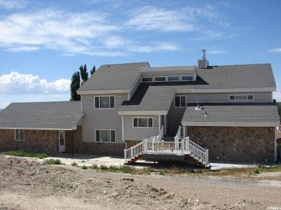 Castle Dale UT Single Family Home For Sale: $375,000