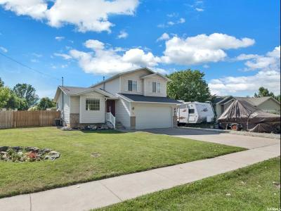 Single Family Home For Sale: 388 S 650 E