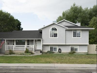Orem Single Family Home For Sale: 804 S 1730 W