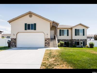 Nibley Single Family Home For Sale: 1144 W 2600 S