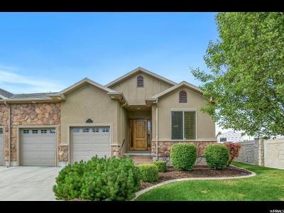 Alpine Single Family Home For Sale: 115 E Paradise Ln S