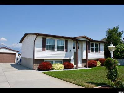 West Jordan Single Family Home For Sale: 8651 S 3780 W