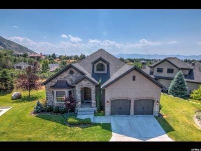 Sandy Single Family Home For Sale: 3108 E Scenic Valley Ln S