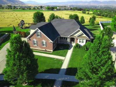 Providence Single Family Home For Sale: 238 E Sunset Cv