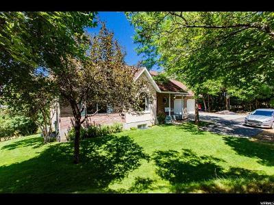 Single Family Home For Sale: 805 S Skylake Dr