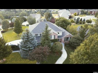 Alpine Single Family Home For Sale: 237 Meadowlark Dr