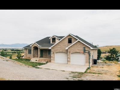 Preston Single Family Home For Sale: 2937 E 800 S