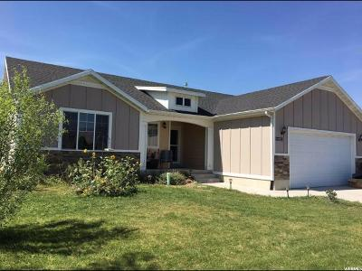 Wellsville Single Family Home For Sale: 525 N 850 E