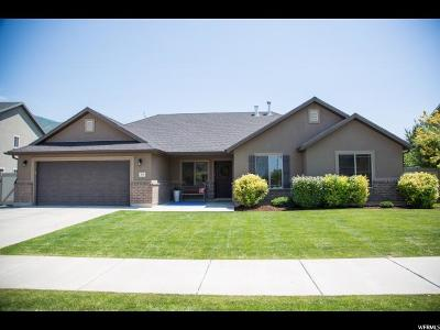 Springville Single Family Home For Sale: 611 S 525 W