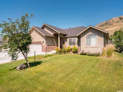 Perry Single Family Home For Sale: 2277 S 385 W