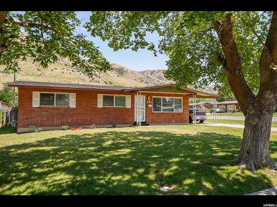 Brigham City Single Family Home For Sale: 562 N Cherry Dr