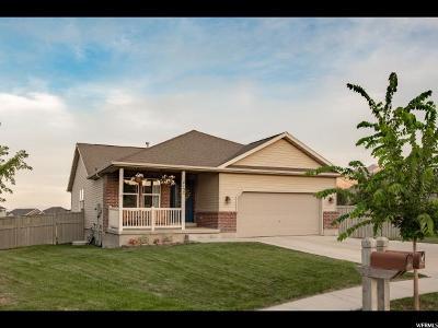 Eagle Mountain Single Family Home For Sale: 4132 E Sioux N