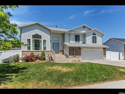 American Fork Single Family Home For Sale: 318 W 850 N