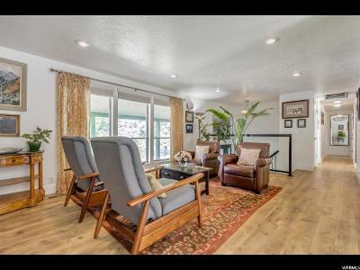 Alpine Single Family Home For Sale: 583 S High Bench Rd