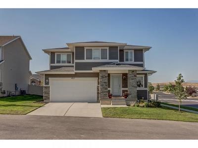 Eagle Mountain Single Family Home For Sale: 4211 E Furrow Way