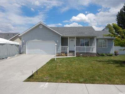 West Valley City Single Family Home For Sale: 3365 S Celebration Dr W