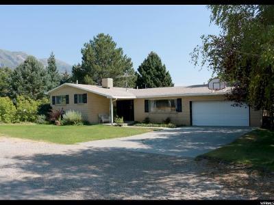 Alpine Single Family Home For Sale: 340 E Carlisle Ave