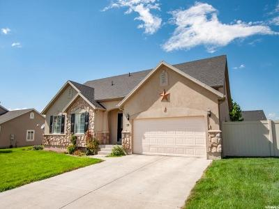 Payson Single Family Home For Sale: 59 E 1320 S
