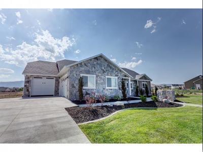 Single Family Home For Sale: 9179 N Sunnyvale Dr
