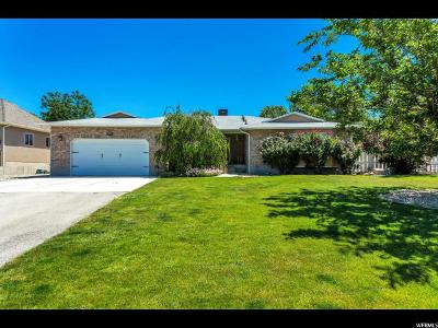 Riverton Single Family Home For Sale: 11739 S 1220 W