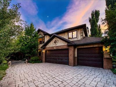 Sandy Single Family Home For Sale: 10062 S Stone Mountain Cv