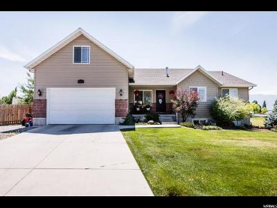 Nibley Single Family Home For Sale: 862 W 2840 S