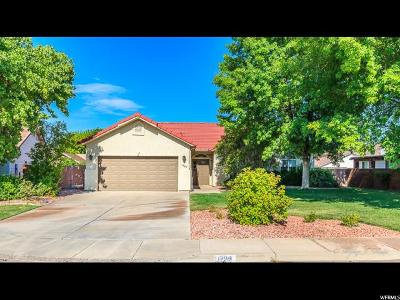 St. George Single Family Home For Sale: 1209 N 1610 Cir W