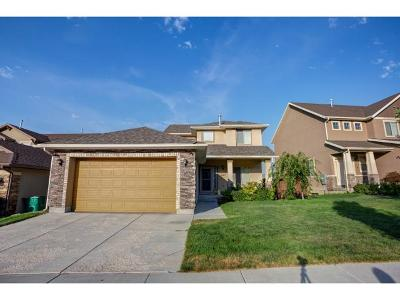 Lehi Single Family Home For Sale: 1967 W Woodview Dr