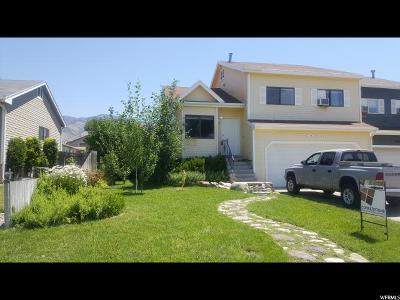 North Logan Single Family Home For Sale: 2700 N 300 E