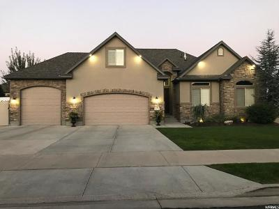 Single Family Home For Sale: 10233 S 10233 S Royal Meadows Way Way
