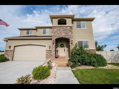 Lehi Single Family Home For Sale: 197 N Constitution Dr