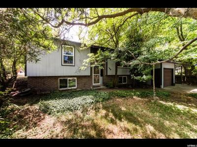 Providence Single Family Home For Sale: 160 W 200 S