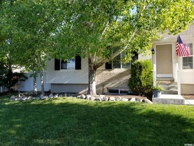 Riverton Single Family Home For Sale: 5203 W Butterfield Peak Cir
