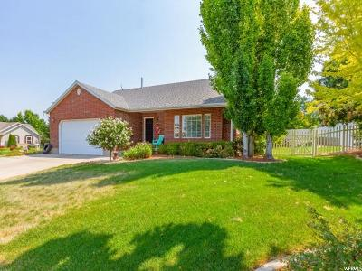 Salem Single Family Home For Sale: 995 S 480 W