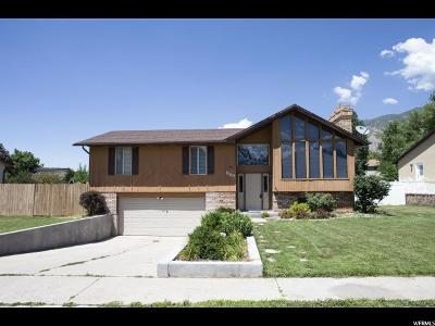 Springville Single Family Home For Sale: 889 E 1150 S