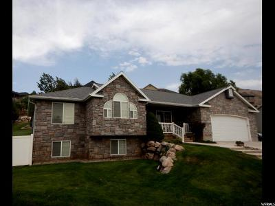 Perry Single Family Home For Sale: 760 W 2850 S