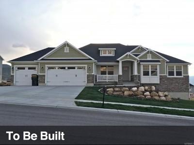 Elk Ridge Single Family Home Under Contract: 317 N Elk Ridge Dr #1