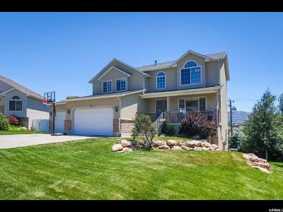 Draper Single Family Home For Sale: 833 W Stephens View Way S