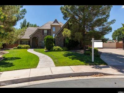St. George Single Family Home For Sale: 2504 E 2300 South Cir