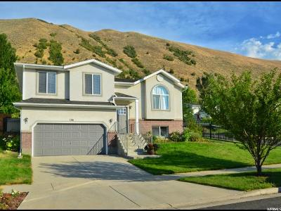 Draper Single Family Home For Sale: 136 E Steep Mountain Dr S