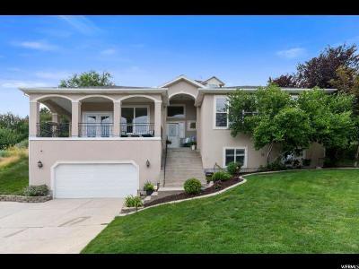 Draper Single Family Home For Sale: 13789 E Esther Ann Cir