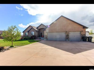 Price UT Single Family Home For Sale: $389,999