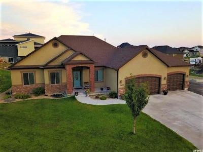 Eagle Mountain Single Family Home For Sale: 2630 E Riley Dr N