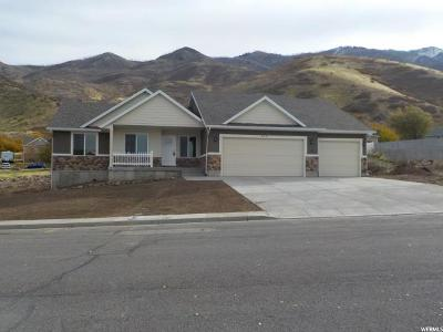 Santaquin Single Family Home For Sale: 328 N Apple Vw