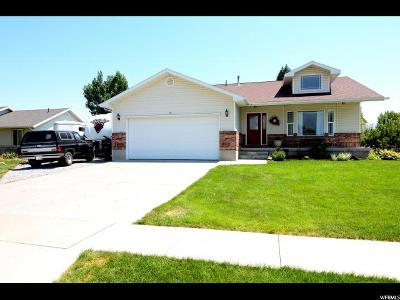 Hyrum Single Family Home For Sale: 312 N 1090 W