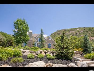 Sandy Single Family Home For Sale: 11849 S Hidden Brook Blvd E
