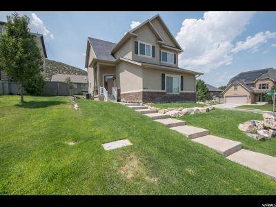 Eagle Mountain Single Family Home For Sale: 6965 N Kiowa Pkwy E