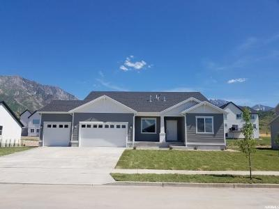 Santaquin Single Family Home Under Contract: 1077 S Red Barn View Dr #29